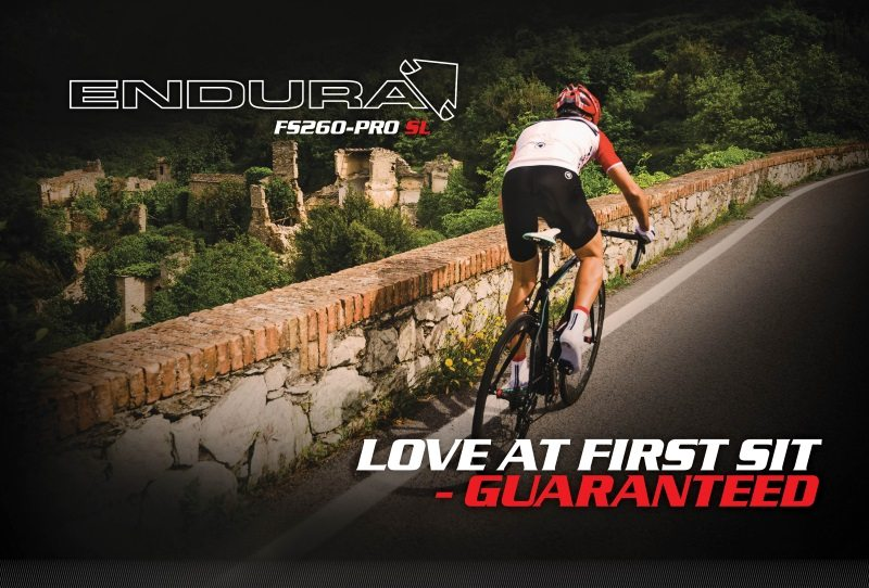 Endura FS260-Pro SL Dealer Document