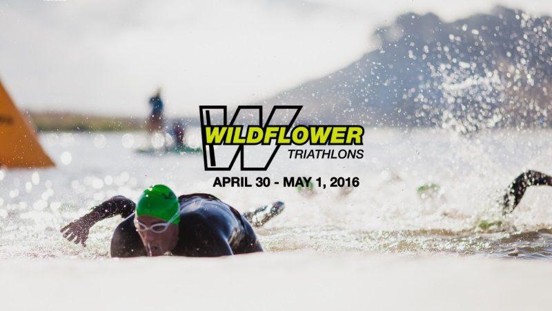 Wildflower 2016