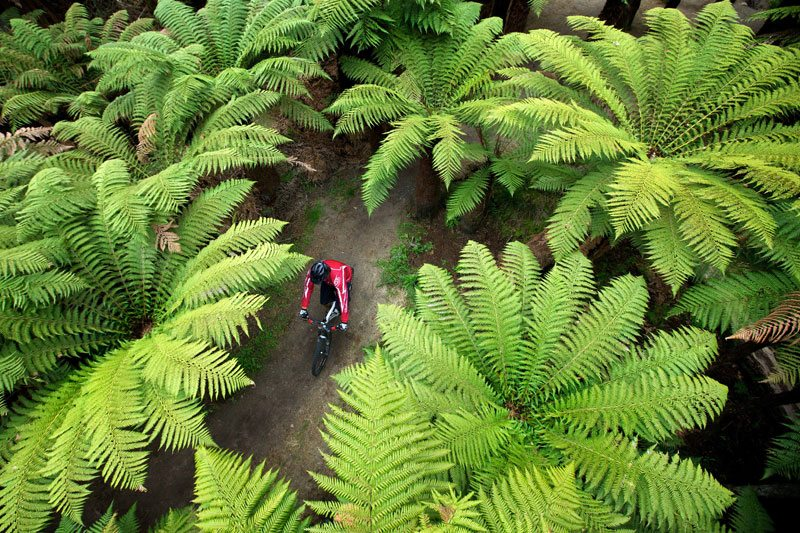Trail riding in Rotorua, New Zealand - photo credit XTERRA